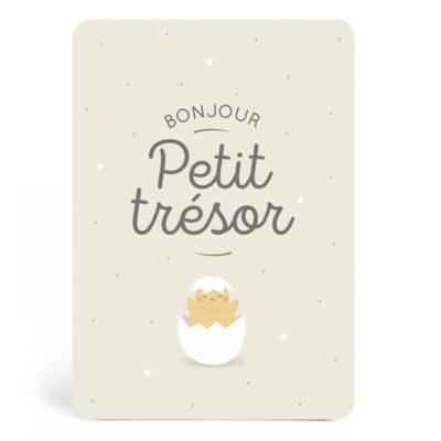 carte-PETIT-TRESOR-ZU-det-950x950