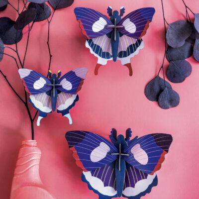 swallowtail-butterflies-2