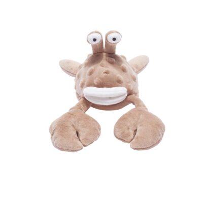 crabe marron 1
