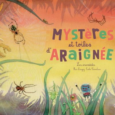 livre mystères et toiles d'araignées éditions du ricochet